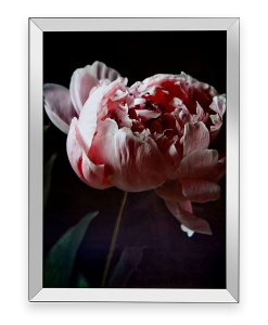 Mirror Framed Pink Peonies Picture