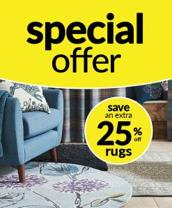 Save an Extra 25% off Rugs!